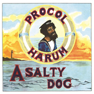 Produktbilde for A Salty Dog (VINYL - 180 gram)