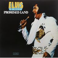 Promised Land (VINYL - 180 gram - Gold)