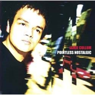 Pointless Nostalgic (Pure Pleasure) (VINYL - 2LP - 180 gram)