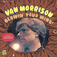 Blowin' Your Mind (VINYL - 180 gram)
