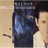 Brian Wilson - Extended Version (VINYL - 2LP)