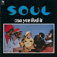 Can You Feel It? (VINYL)