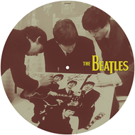 Thirty Weeks In 1963 (VINYL - Picture Disc)