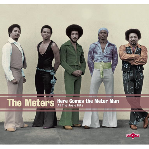 Here Comes The Meter Man (VINYL)