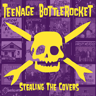 Stealing The Covers (VINYL)