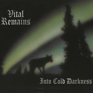 Into Cold Darkness (VINYL)