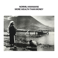 More Wealth Than Money (VINYL - 2LP)