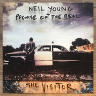 The Visitor (VINYL - 2LP)