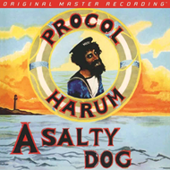 Produktbilde for A Salty Dog (Mobile Fidelity) (USA-import) (VINYL - 180 gram)