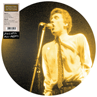 Access All Areas (VINYL - Picture Disc)