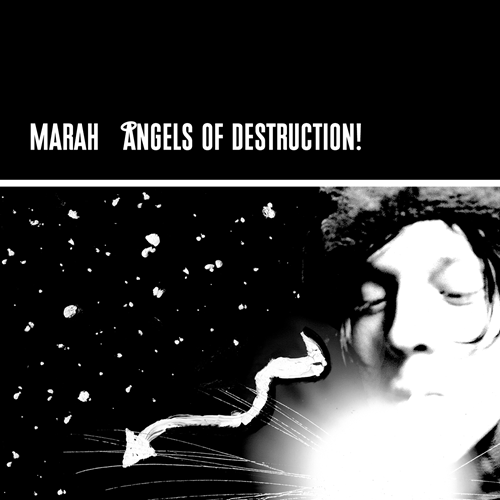 Angels Of Destruction (VINYL - 2LP)