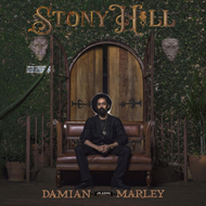 Stony Hill - Deluxe Edition (VINYL - 2LP)