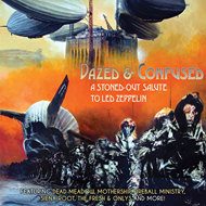 Dazed & Confused - A Stoned-Out Salute To Led Zeppelin (VINYL - 2LP)