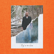 Produktbilde for Man Of The Woods (VINYL)