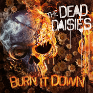 Burn It Down - Limited Edition (VINYL - Picture Disc)