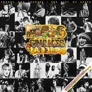 Snakes And Ladders / The Best Of Faces (VINYL)