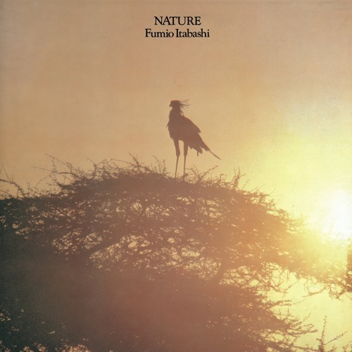 Nature - Limited Edition (VINYL)