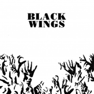 Black Wings (VINYL - 2LP)