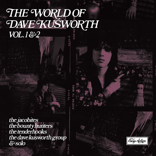 World Of Dave Kusworth (VINYL - 2LP)