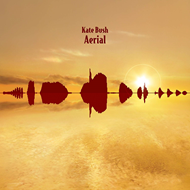 Aerial (Remastered) (VINYL - 2LP - 180 gram)