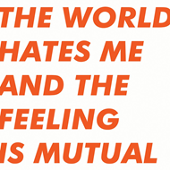 World Hates Me And The Feeling Is Mutual (VINYL)