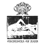 Produktbilde for Orchestra Of Dark (VINYL)