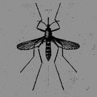 Produktbilde for Mosquito Control (UK-import) (VINYL)