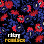 Remixes (VINYL)