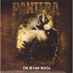 Far Beyond Driven (VINYL - 2LP)