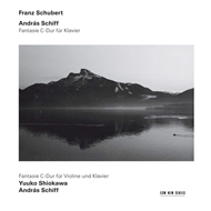 Produktbilde for Schubert: Fantasies (CD)