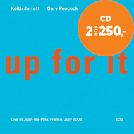 Produktbilde for Up For It (CD)