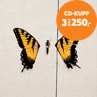 Produktbilde for Brand New Eyes (CD)