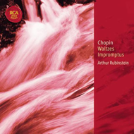 Produktbilde for Chopin: Waltzes; Impromptus (UK-import) (CD)