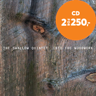 Produktbilde for Into The Woodwork (CD)