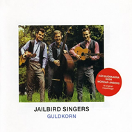 Produktbilde for Guldkorn (CD)