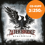 Produktbilde for Blackbird (CD)