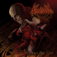 Produktbilde for Nightmares Made Flesh (Remastered) (CD)