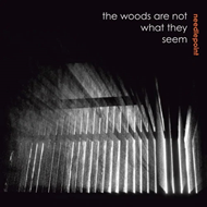 Produktbilde for The Woods Are Not What They Seem (VINYL)