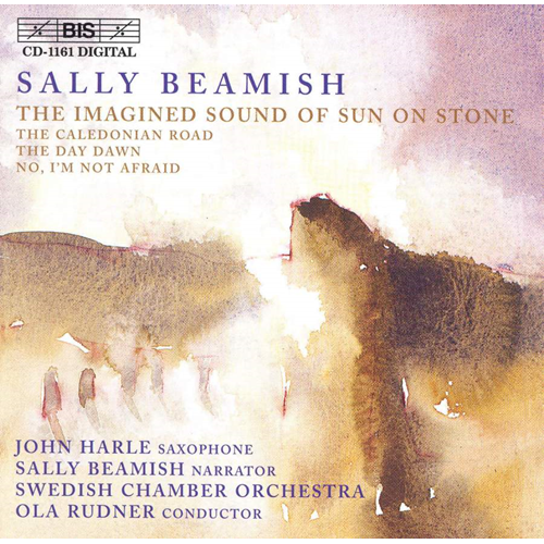 Beamish: The Imagined Sound of Sun on Stone etc (CD)