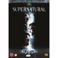 Produktbilde for Supernatural - Sesong 14 (DVD)