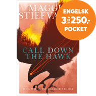 Produktbilde for Call Down the Hawk (BOK)