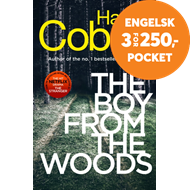 Produktbilde for The Boy from the Woods (BOK)