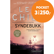 Produktbilde for Syndebukk (BOK)