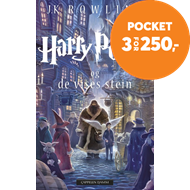 Produktbilde for Harry Potter og de vises stein (BOK)