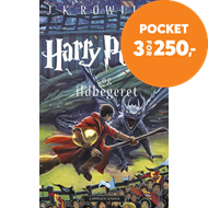 Produktbilde for Harry Potter og ildbegeret (BOK)
