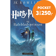 Produktbilde for Harry Potter og Halvblodsprinsen (BOK)