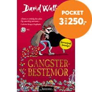 Produktbilde for Gangster-bestemor (BOK)