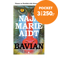 Produktbilde for Bavian (BOK)