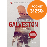 Produktbilde for Galveston (BOK)