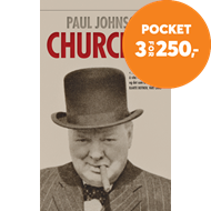 Produktbilde for Churchill (BOK)